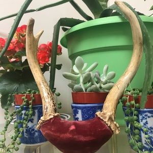 Other - ANTLERS // Vintage Wall Hanging
